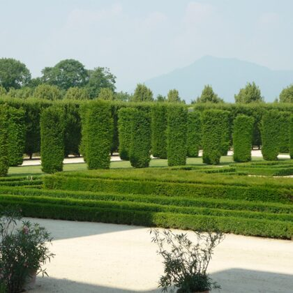 Passeggiata nei giardini della Reggia
